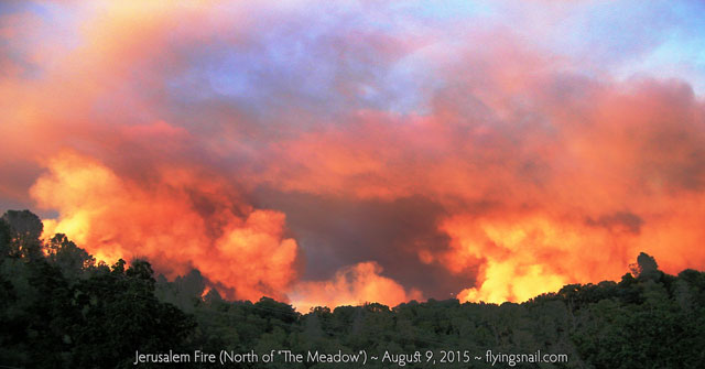 Jerusalem Fire ~ North of 'The Meadow' ~ August 9, 2015