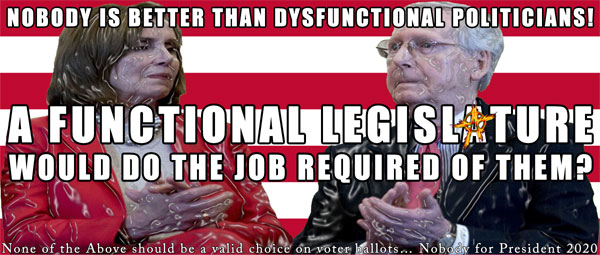 Nobody is better than dysfunctional politicians!  A functional legislature would do the job required for them? None of the Above should be a valid choice on voter ballots… Nobody for President 2020
