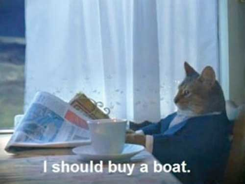 Cat reading newspaper says, 'I should buy a boat.'
