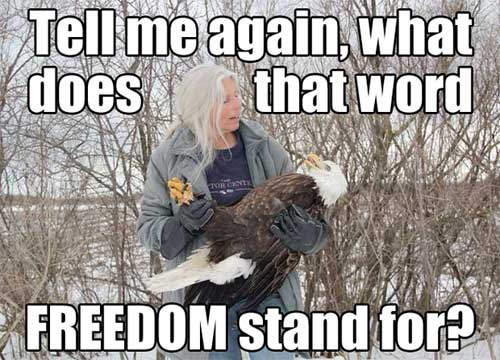 Tell me again, what does that word FREEDOM stand for?