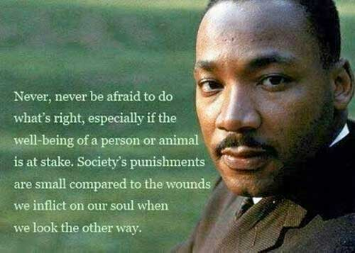 Never, never be afraid to do what's right, especially if the well-being of a person or animal is at stake.  Society's punishments are small compared to the wounds we inflict on our soul when we look the other way. ~ Martin L. King