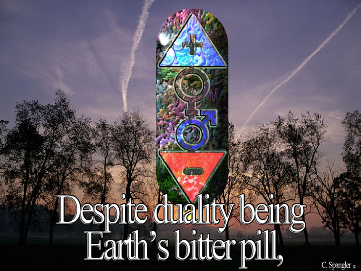 Despite duality being life's bitter pill,